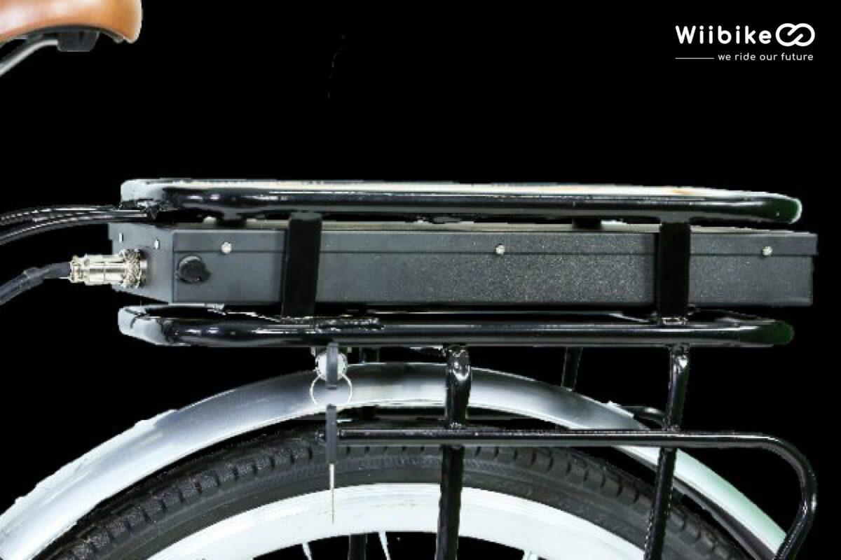 xe đạp trợ lực điện Wiibike
