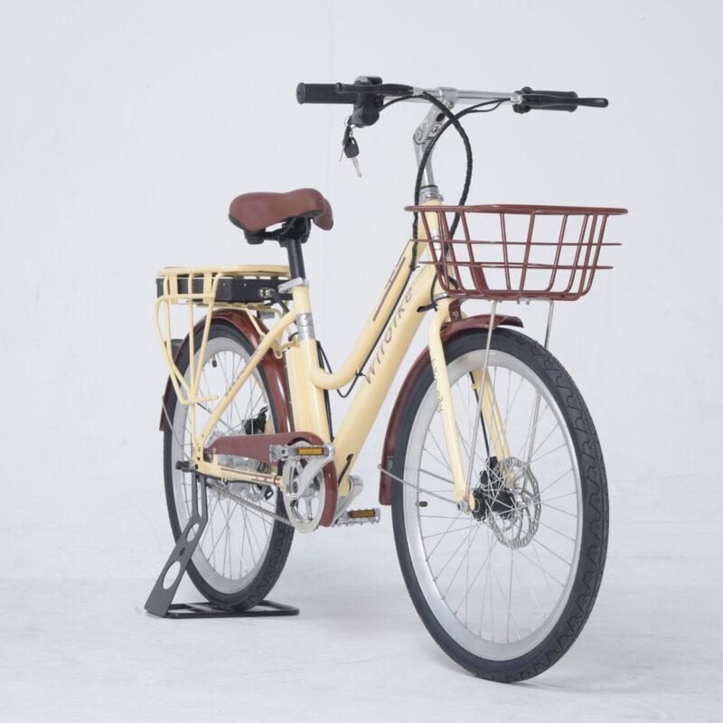xe đạp trợ lực điện
